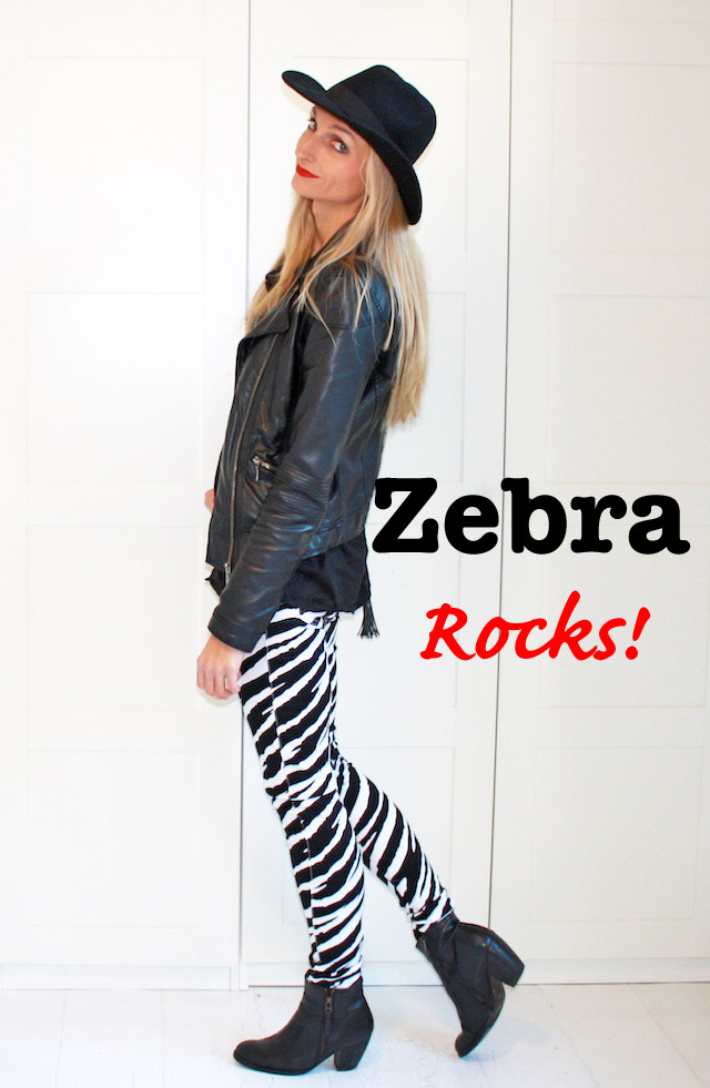 zebrarocks1